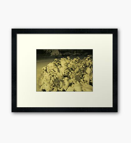 Feb. 19 2012 Snowstorm 42 Framed Print