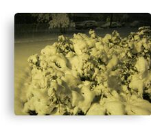 Feb. 19 2012 Snowstorm 42 Canvas Print