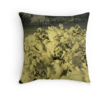Feb. 19 2012 Snowstorm 42 Throw Pillow