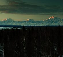Denali and Friends by mikewheels