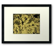 Feb. 19 2012 Snowstorm 43 Framed Print