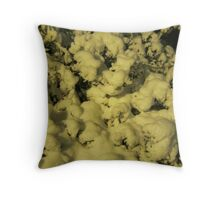Feb. 19 2012 Snowstorm 43 Throw Pillow