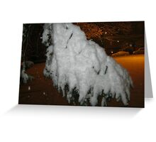 Feb. 19 2012 Snowstorm 45 Greeting Card