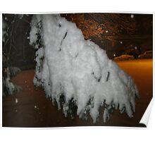 Feb. 19 2012 Snowstorm 45 Poster