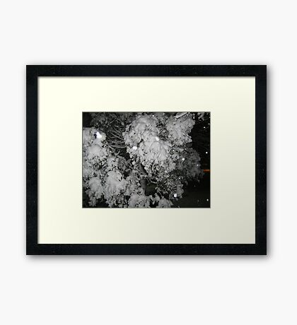 Feb. 19 2012 Snowstorm 47 Framed Print