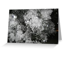 Feb. 19 2012 Snowstorm 47 Greeting Card