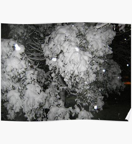 Feb. 19 2012 Snowstorm 47 Poster