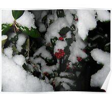 Feb. 19 2012 Snowstorm 48 Poster