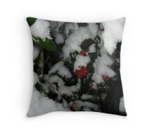 Feb. 19 2012 Snowstorm 48 Throw Pillow