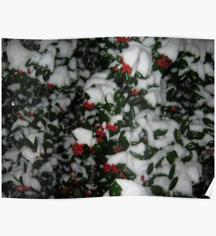Feb. 19 2012 Snowstorm 49 Poster