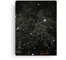 Feb. 19 2012 Snowstorm 50 Canvas Print