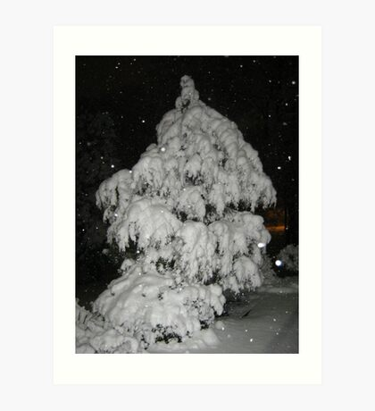 Feb. 19 2012 Snowstorm 52 Art Print