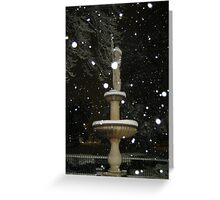 Feb. 19 2012 Snowstorm 53 Greeting Card