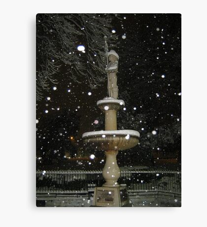 Feb. 19 2012 Snowstorm 54 Canvas Print