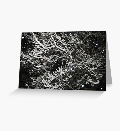 Feb. 19 2012 Snowstorm 55 Greeting Card
