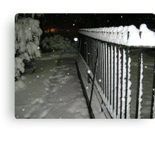 Feb. 19 2012 Snowstorm 56 Canvas Print
