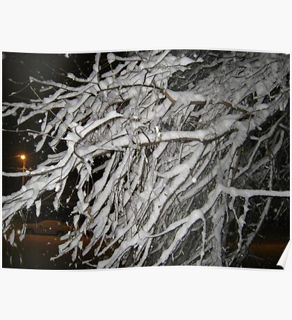 Feb. 19 2012 Snowstorm 60 Poster