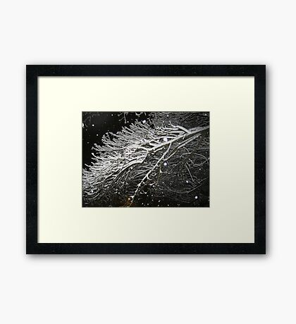 Feb. 19 2012 Snowstorm 61 Framed Print