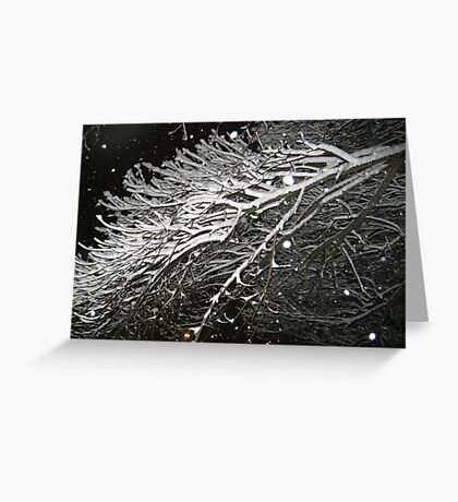 Feb. 19 2012 Snowstorm 61 Greeting Card