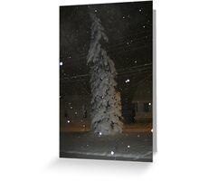 Feb. 19 2012 Snowstorm 63 Greeting Card