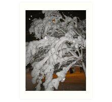 Feb. 19 2012 Snowstorm 65 Art Print