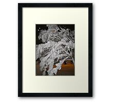 Feb. 19 2012 Snowstorm 65 Framed Print