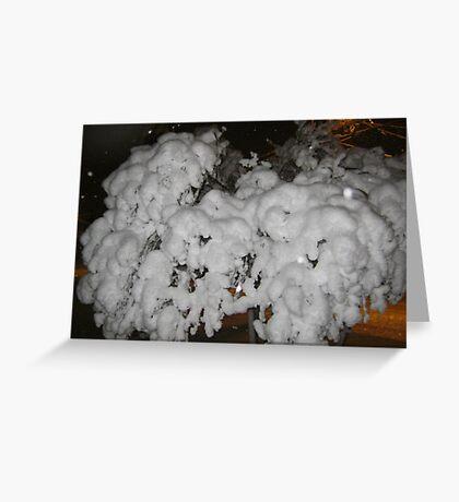 Feb. 19 2012 Snowstorm 66 Greeting Card