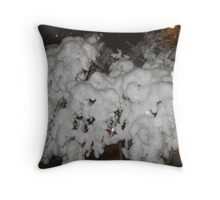 Feb. 19 2012 Snowstorm 66 Throw Pillow