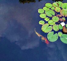 Koi Swimming In The Clouds By Lily Pads by Jane Neill-Hancock