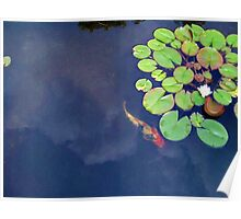 Koi Swimming In The Clouds By Lily Pads Poster