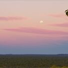 Undara Moonrise by Chris Cohen
