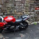 Baby Wants a Big Red Bike! by diggle
