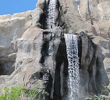 Disneyland Waterfall by Darryl