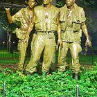 Vietnam War Memorial by Darryl