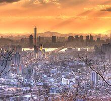 Seoul Skyline from N Seoul Tower by Jimmy McIntyre