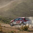 Scouts Rally SA 2015 - ARC Leg 1 - Mark Pedder by Stuart Daddow Photography