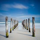 St Clair Beach, Dunedin by Martin Canning
