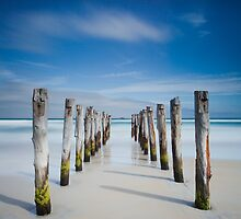 St Clair Beach, Dunedin by Martin Canning
