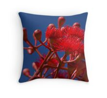 Eucalyptus Flowers and Seed Pods Throw Pillow