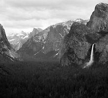 Yosemite National Park by Bryant Scannell
