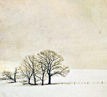 Solitude by Lenagraphy