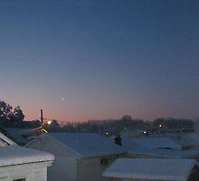 Feb. 19 2012 Snowstorm 69 by dge357