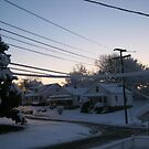 Feb. 19 2012 Snowstorm 71 by dge357