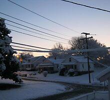 Feb. 19 2012 Snowstorm 71 by dge357