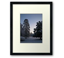 Feb. 19 2012 Snowstorm 74 Framed Print