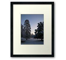 Feb. 19 2012 Snowstorm 74 Framed Print