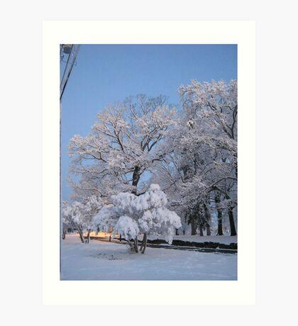 Feb. 19 2012 Snowstorm 75 Art Print