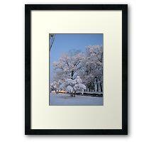 Feb. 19 2012 Snowstorm 75 Framed Print