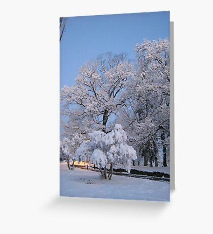Feb. 19 2012 Snowstorm 75 Greeting Card