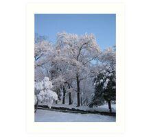 Feb. 19 2012 Snowstorm 76 Art Print